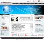2078-管理咨询公司网站