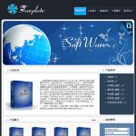 5004-软件企业网站