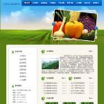 5019-蔬菜公司网站