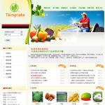 6003-农场网站