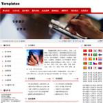 6016-翻译公司网站